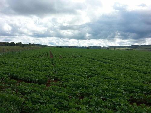 excelente fazenda dupla aptidão uberlândia