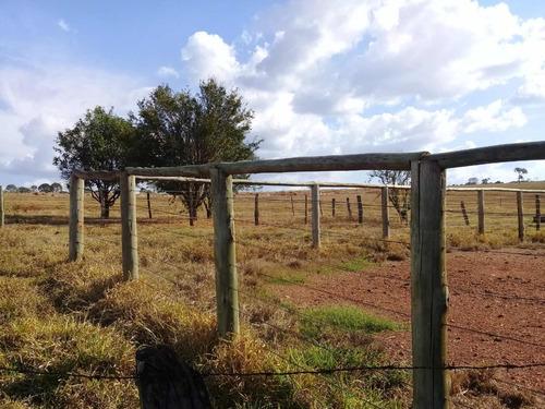 excelente fazenda em araguapaz goias