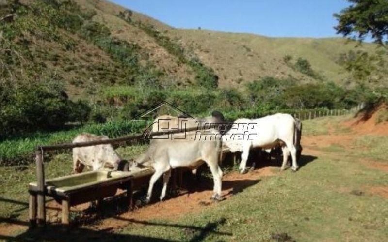 excelente fazenda em lorena