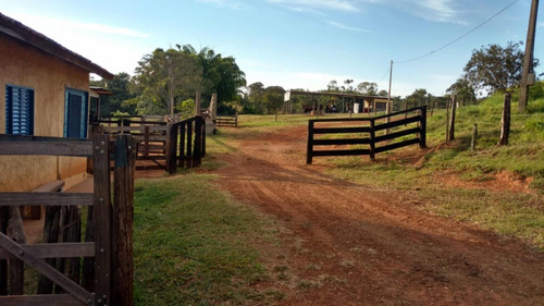 excelente fazenda município do campina verde