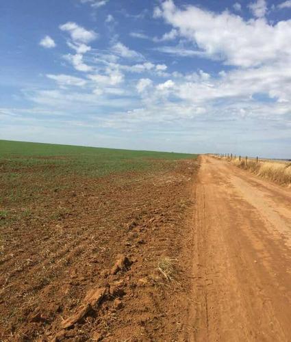 excelente fazenda para agricultura