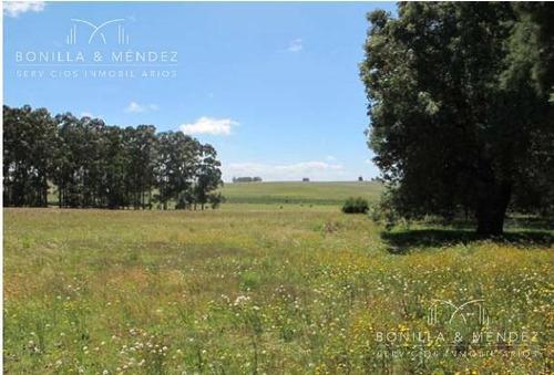 excelente fracción de más de 5 hectáreas con frente a la ruta 104 y camino vecinal.