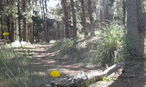 excelente lote arbolado en senderos 3 de costa esmeralda