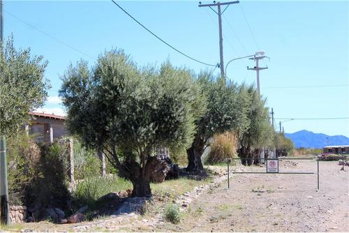 excelente lote en la magdalena olivar ll