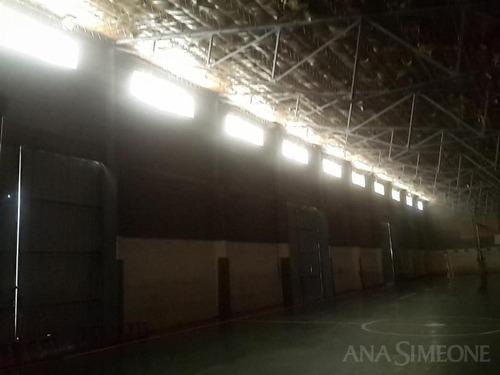 excelente nave industrial de 825 m2 ubicada sobre un terreno de 8700 m2 en san rafael mendoza