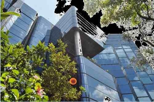 excelente oficina en renta de 990 m2 en jardines del pedregal.