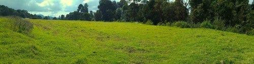 excelente predio de 1.6 hectareas en san simón
