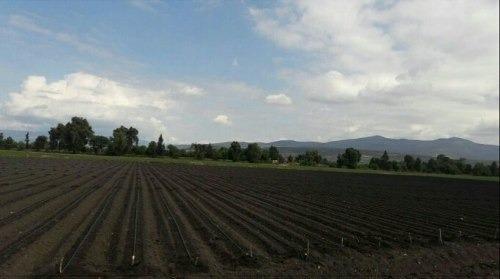 excelente rancho agricola en san juan de la vega, apaseo el grande, guanajuato