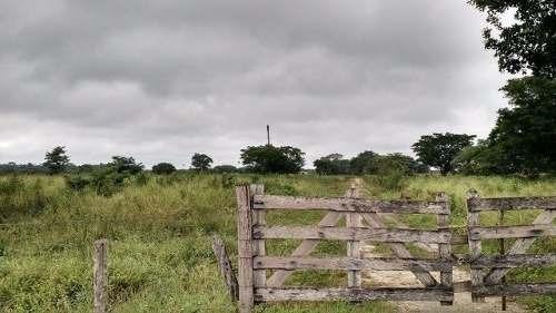 excelente rancho agricola y ganadero listo para trabajar