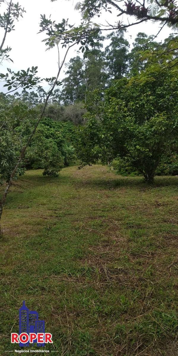 excelente sitio de 30.000 já com pomar à venda em iguape. - ch00789 - 68028461