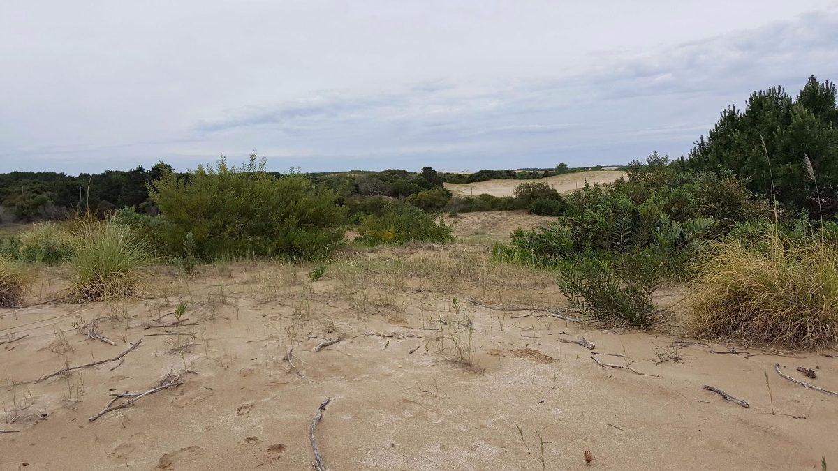 excelente terreno 1300mt costa esmeralda | senderos 3