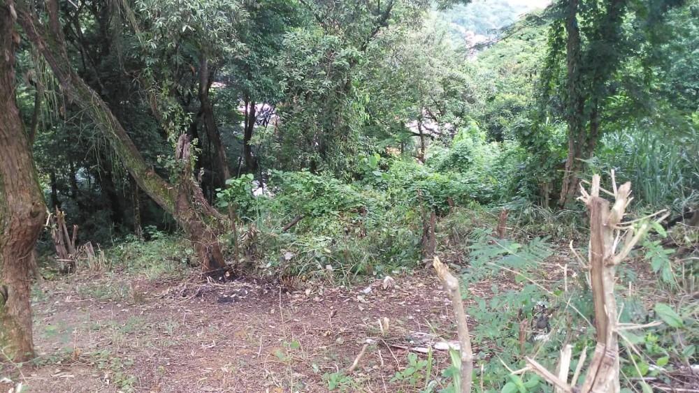 excelente terreno com ótima vista e bem arborizado