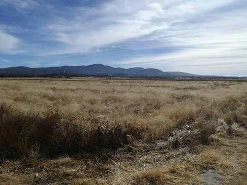 excelente terreno de 1 hectarea en venta en corral de piedras negras guanajuato