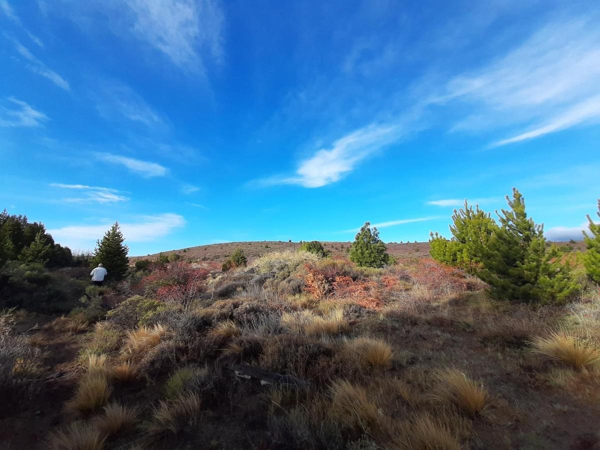excelente terreno de 10.000m2 a minutos de bariloche.