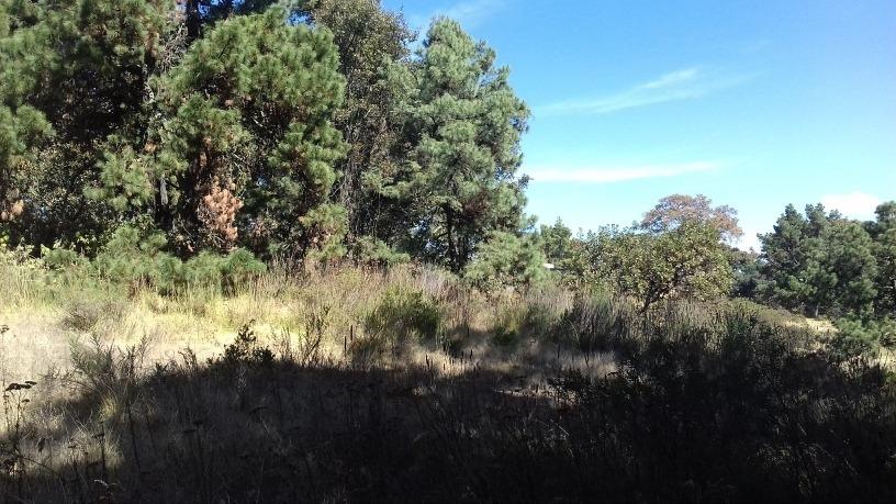 excelente terreno de 5000 m en cahuacán, romero rubio