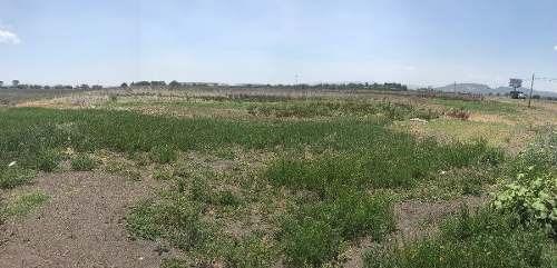 excelente terreno de 6 hectáreas en carretera 57 (sm)