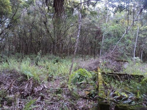 excelente terreno de chácara no gaivota em itanhaém - sp !!!