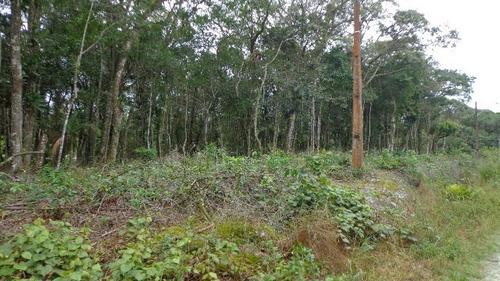 excelente terreno de chácara no jardim são fernando  ref3968