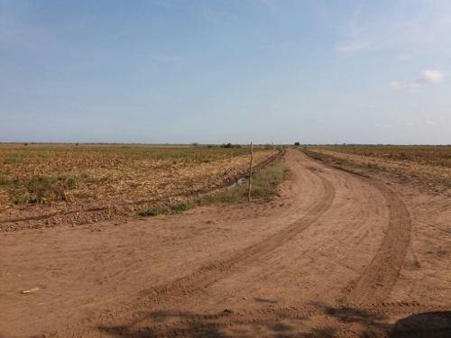 excelente terreno de cultivo