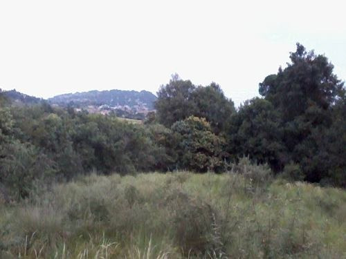 excelente terreno en la carretera méxico cuernavaca
