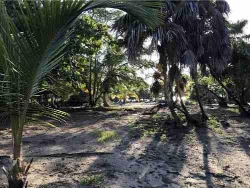 excelente terreno en mahahual