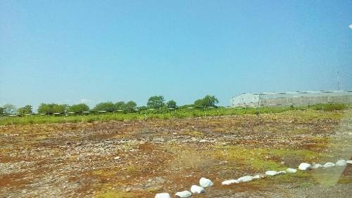 excelente terreno en renta en la costerita