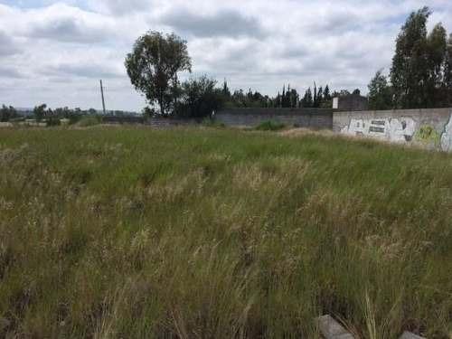 excelente terreno en venta en campestre san isidro en el marqués (mt)