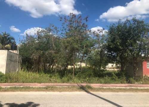 excelente terreno en venta en chicxulub pueblo. cerca de la entrada.