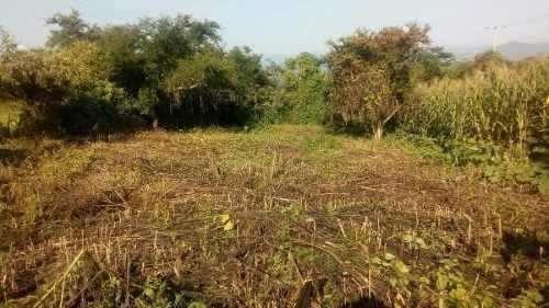 excelente terreno en venta en morelos