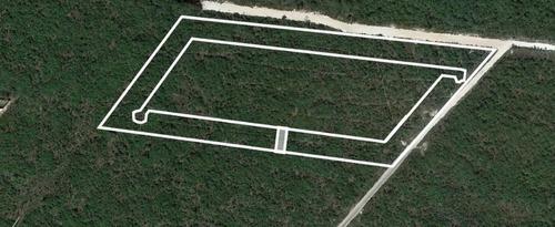 excelente terreno en venta en privada lunare