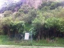 excelente terreno en vialidad de hueyetlaco