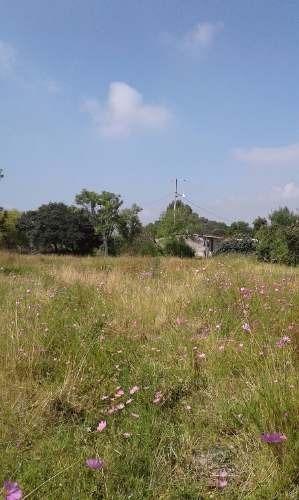excelente terreno en zona con crecimiento, industrial y ecoturistico