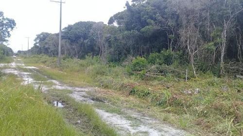 excelente terreno lado praia no marambá em itanhaém - sp