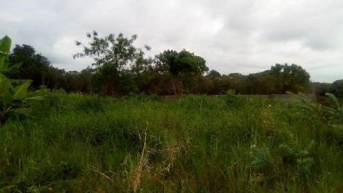 excelente terreno no bairro são joão, em itanhaém - ref 3587