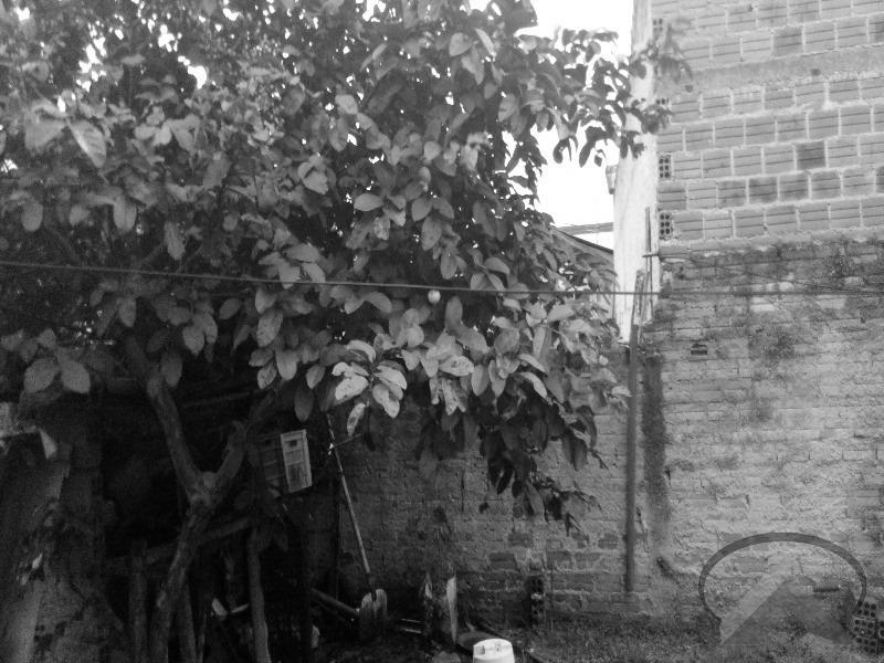 excelente terreno no boqueirão -venda - 1186 - 32209185