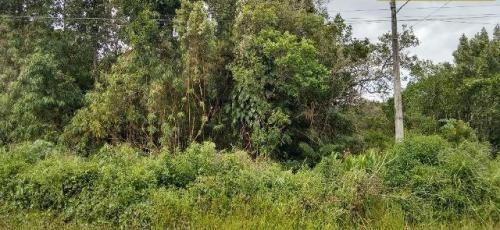excelente terreno no jardim maramba em itanhaém!!
