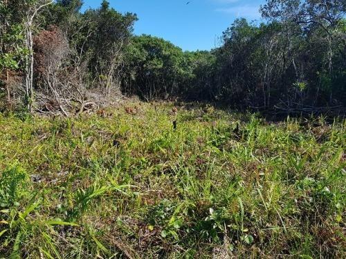 excelente terreno no jardim marambá em itanhaém - sp