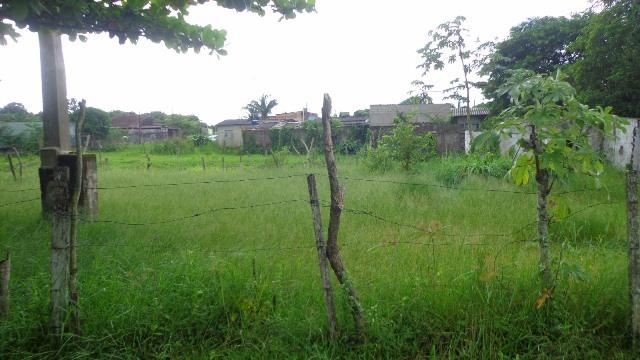 excelente terreno no jardim palmeiras 2 em itanhaém - sp