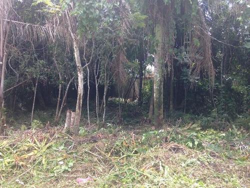 excelente terreno no jardim palmeiras em itanhaém - ref 2764