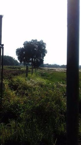 excelente terreno para inversionistas con servicios de luz, agua y drenaje