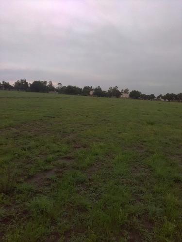 excelente terreno para invertir en zumpango