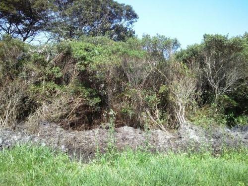 excelente terreno super barato em itanhaém - ref 1233