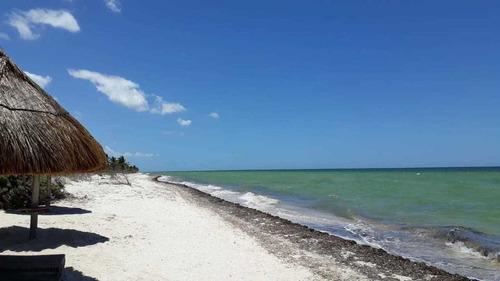 excelentes lotes en la playa de san benito yucatán