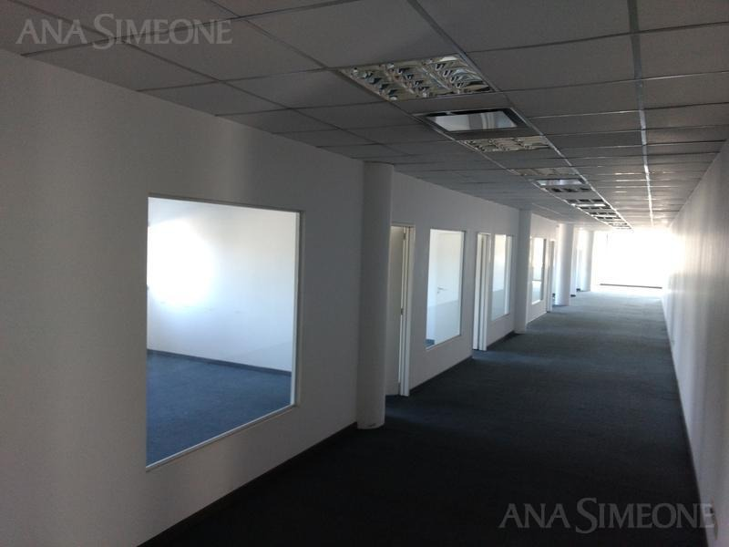excelentes oficinas en importante edificio corporativo