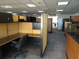 excelentes oficinas en renta de 992 m2 en colonia granada.