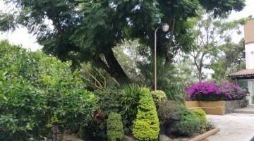 exclusivo conjunto 3 recs. 3 baños. jardín y alberca común