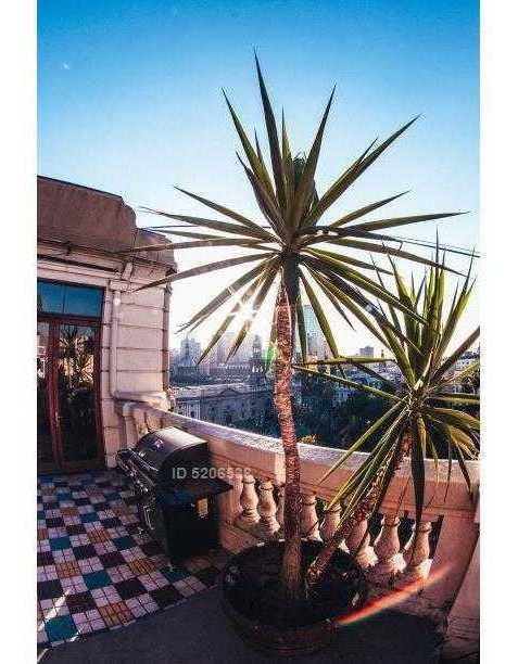 exclusivo penthouse / hotel 400m2 venta o arriendo