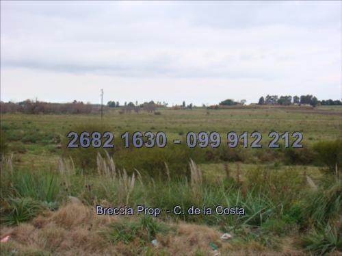 exelente predio 24,5 hectareas en la entrada
