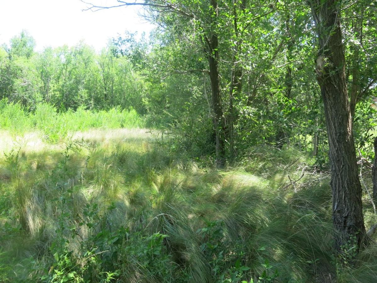 exelente terrenos sobre costanera norte en san esteban.
