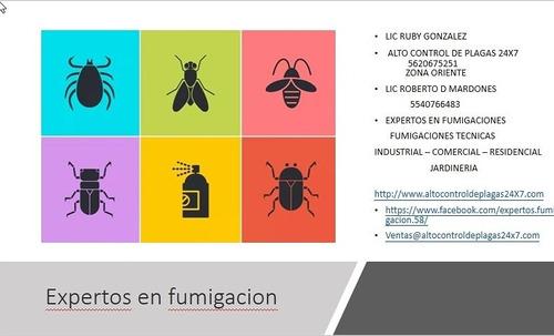 expertos en fumigación (industrial- comercial-residencial)